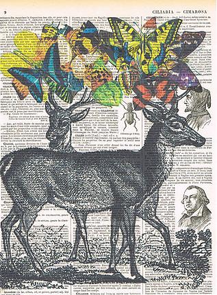 Jackie Bassett - Art visuel